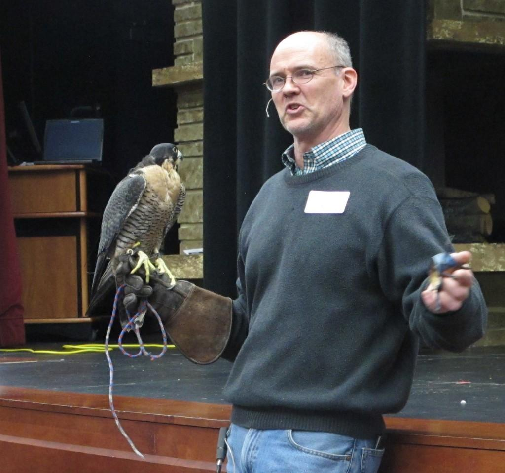 Falconer+Andrew+Weaver+holds+his+peregrine+falcon%2C+Pickle%2C+during+a+Science+Night+demonstration+at+the+Cambridge+auditorium+on+Feb.+27.+PHOTO+COURTESY+OF+ANGIE+ANDERSON