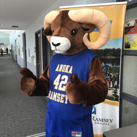 Prior to Covid-19, members of the Cambridge Student Senate would occasionally wear the Rocky the Ram costume around campus. Image Credit: Mackenzie Krzmarzick